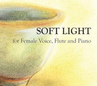 Soft-Light-Cover