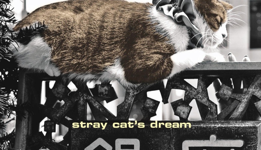 Stray Cat's Dream_1 page
